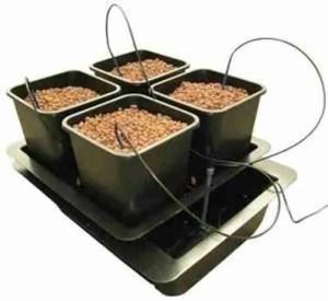 ATAMI Wilma idroponico multi-substrato 4 piante