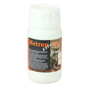 Metrop MR2 Light Bloom