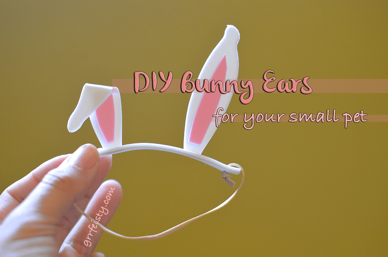 DIY bunny ears for your pet!