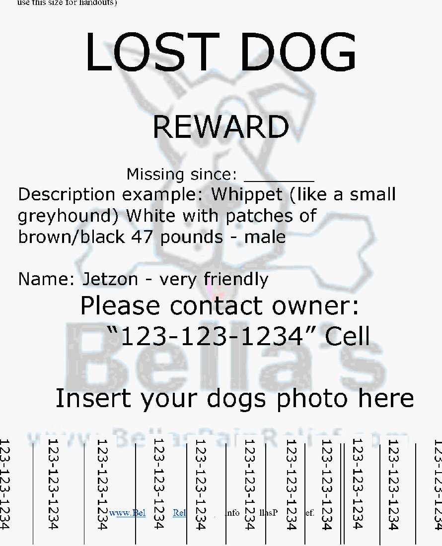 Doc14031984 Missing Flyer Template Missing Person Poster – Lost Dog Poster Template