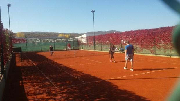 tenis-1-3