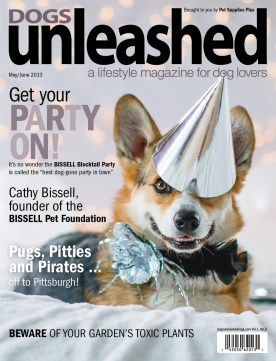 Dogs Unleashed magazine, Grumpy Pups Pet Photography cover shot of corgi at a dog party