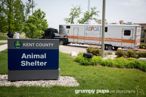 ASPCA truck arrives at Kent County Animal Shelter, grumpy pups pet photography
