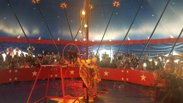 zirkus2019_012