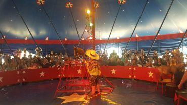 zirkus2019_013