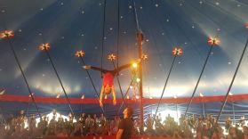zirkus2019_020