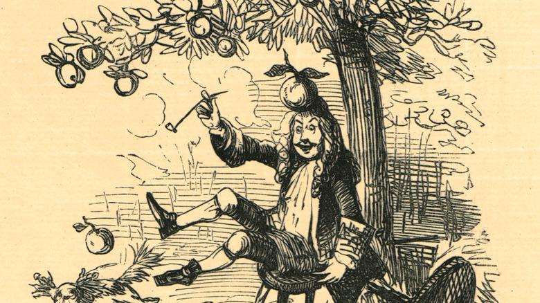 Illustration of apple hitting Newton on the head