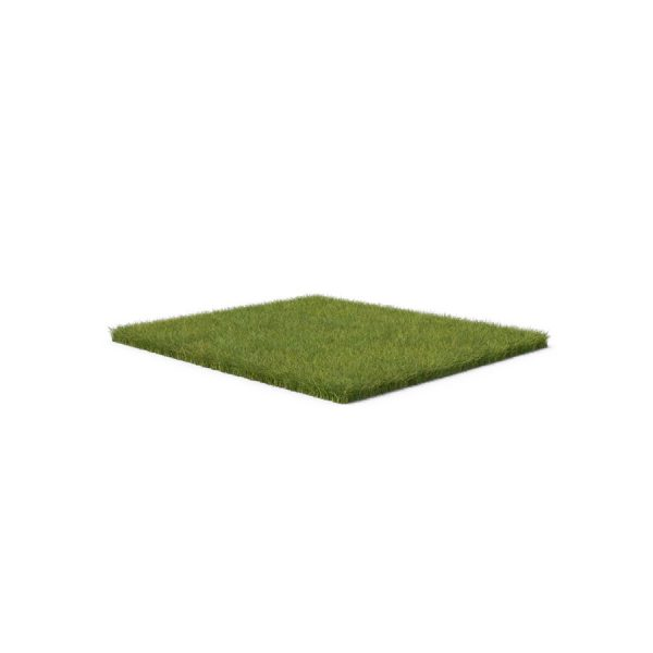 Grass-Patch