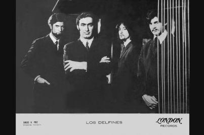 LOS DELFINES 1