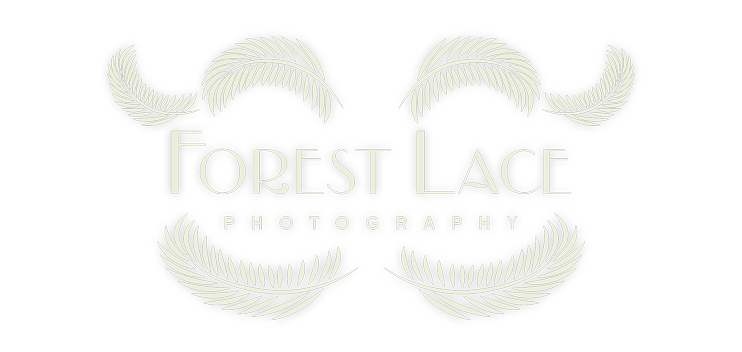 Wedding Photography Logo Design
