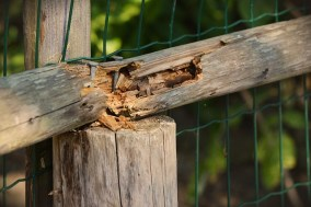 maintaining different types of fencing Hercules gsa