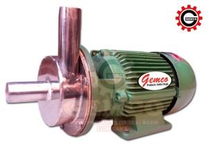 S.S. Filter Pumpmotor