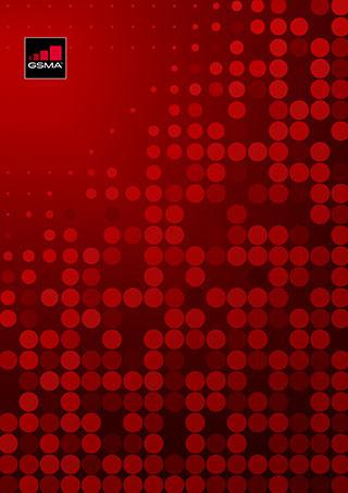 FS.13-NESAS-概览-v1.0 image