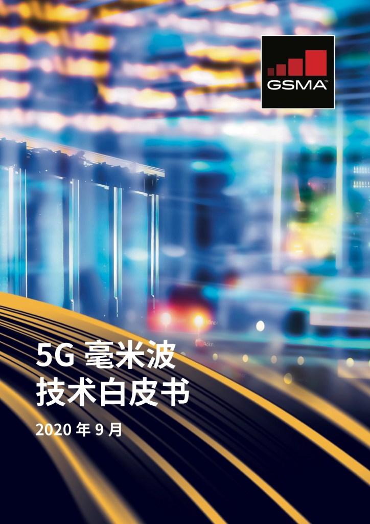《5G毫米波技术白皮书》 image
