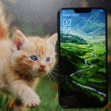 ASUS Zenfone 5/fot. gsmManiaK.pl
