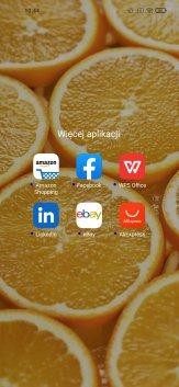 Screenshot_2021-01-19-10-44-13-503_com.miui.home