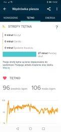 Fitbit wędrówki piesze (4)