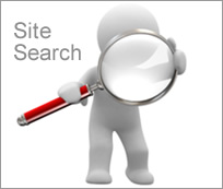 Image result for Site Search Is Important