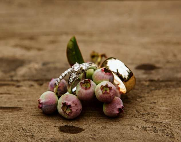 wedding rings with blueberries in snohomish wedding
