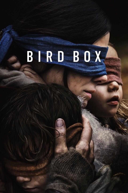 """Résultat de recherche d'images pour """"bird box"""""""