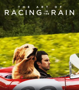 Image result for the art of racing in the rain movie