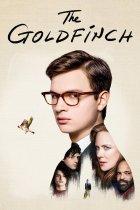 The Goldfinch recensie op Amazon Prime Video