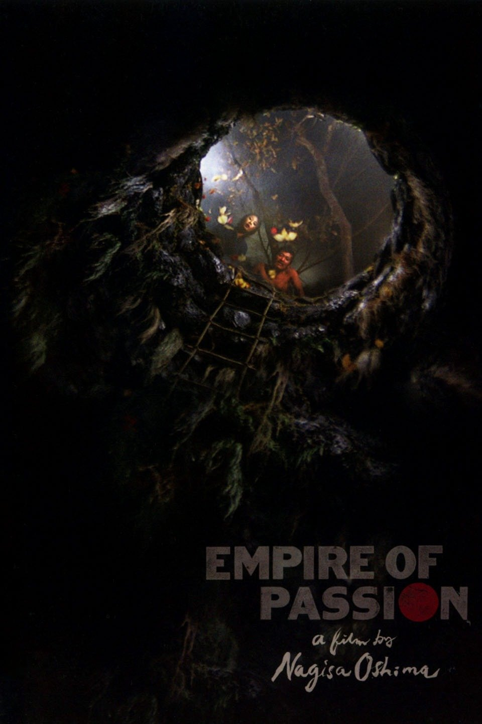 Image result for empire of passion