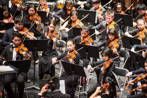 Symphony violins at work