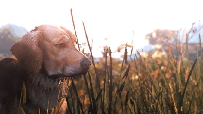 GTA 5 - Ultimate Realistic Graphics Mod | Cinematic Showcase | Wildlife
