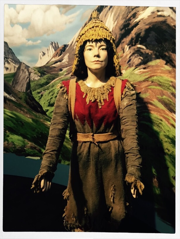 Bjork Moma Exhibit