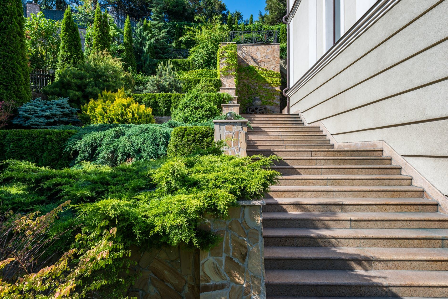green shrubs and trees near gray steps of building