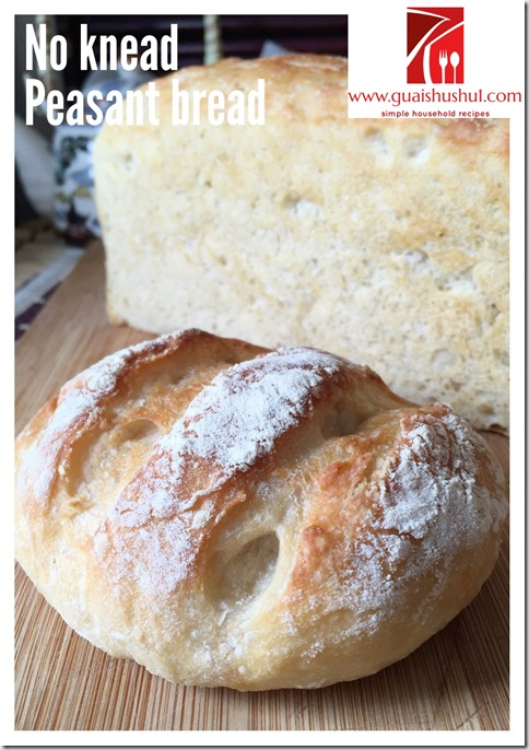 No Knead Simple Peasant Bread (免揉农夫面包)