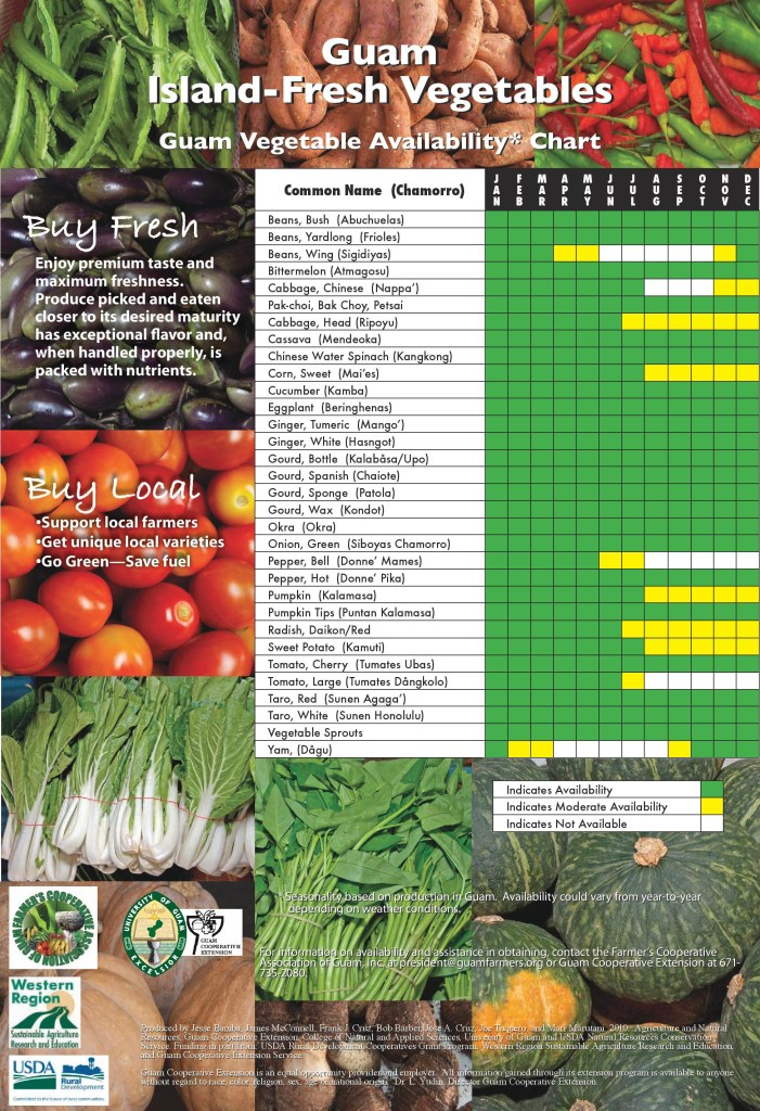 Lesson Plan Vegetables And Fruits