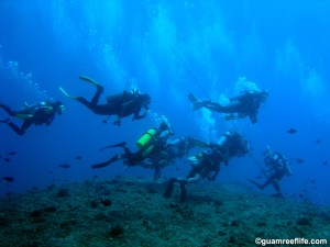 """A large group of divers at the popular """"Blue Hole"""" dive site"""