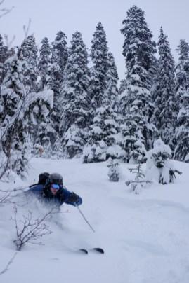 I ski too (Jan's photo)
