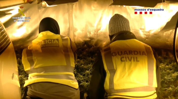 La Guardia Civil y los Mossos d'Esquadra detienen a los 15 integrantes de una red dedicada al robo en domicilios en todo el territorio nacional
