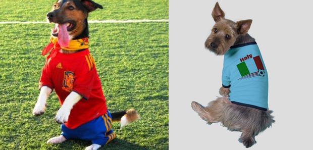 Perros fanáticos de España e Italia, Eurocopa 2012