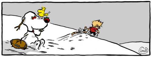 Calvin and Hobbes + Peanuts