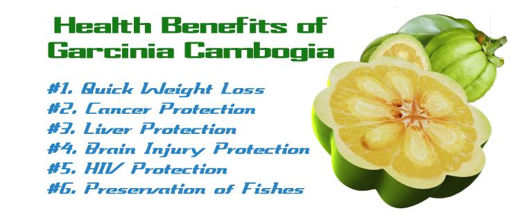 Benefits of Garcinia Cambogia