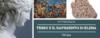Personaggi di mitologia Teseo e il rapimento di Elena di Troia
