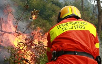 l'abolizione del Corpo Forestale dello Stato e gli incendi boschivi
