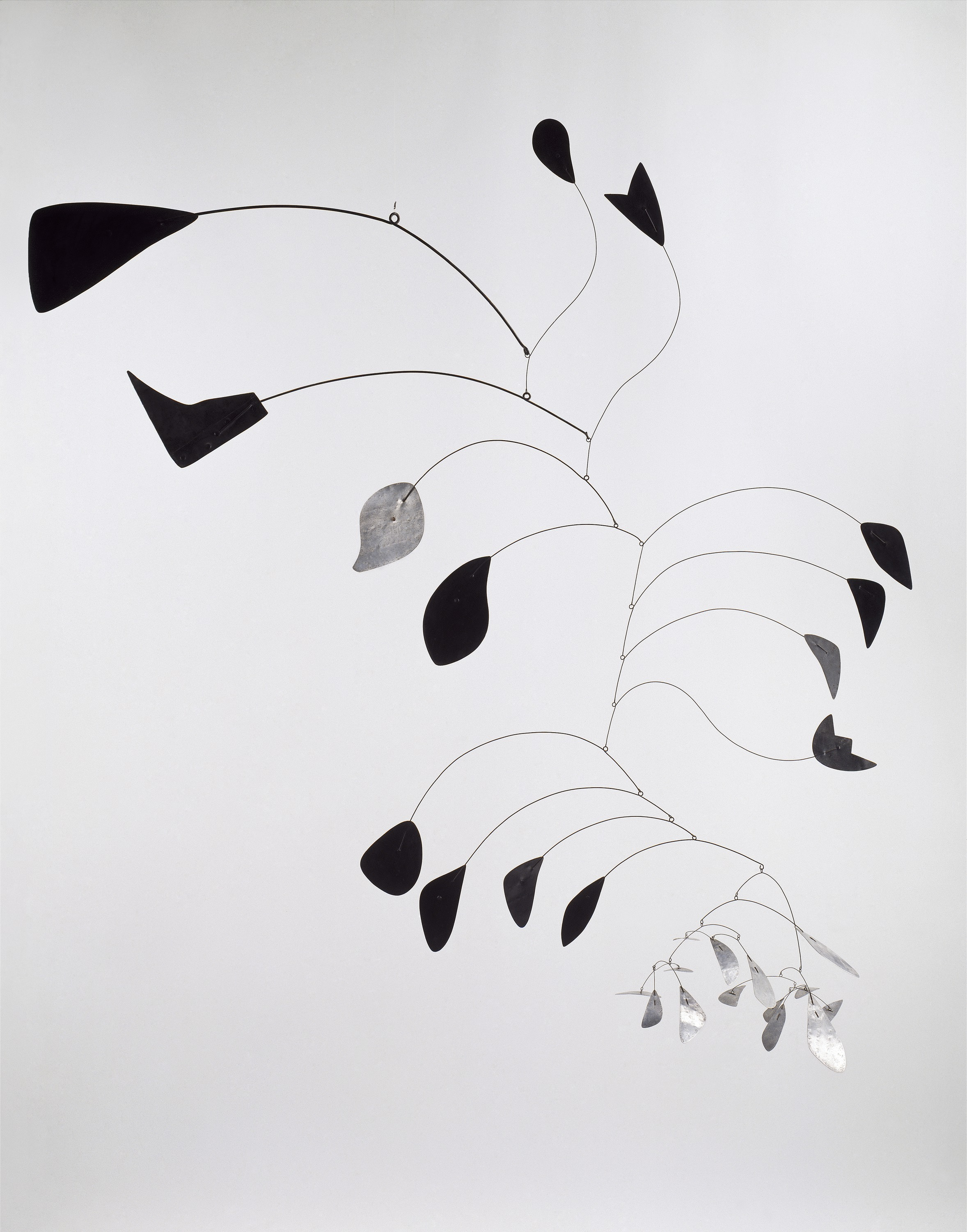 Calder Gravity And Grace