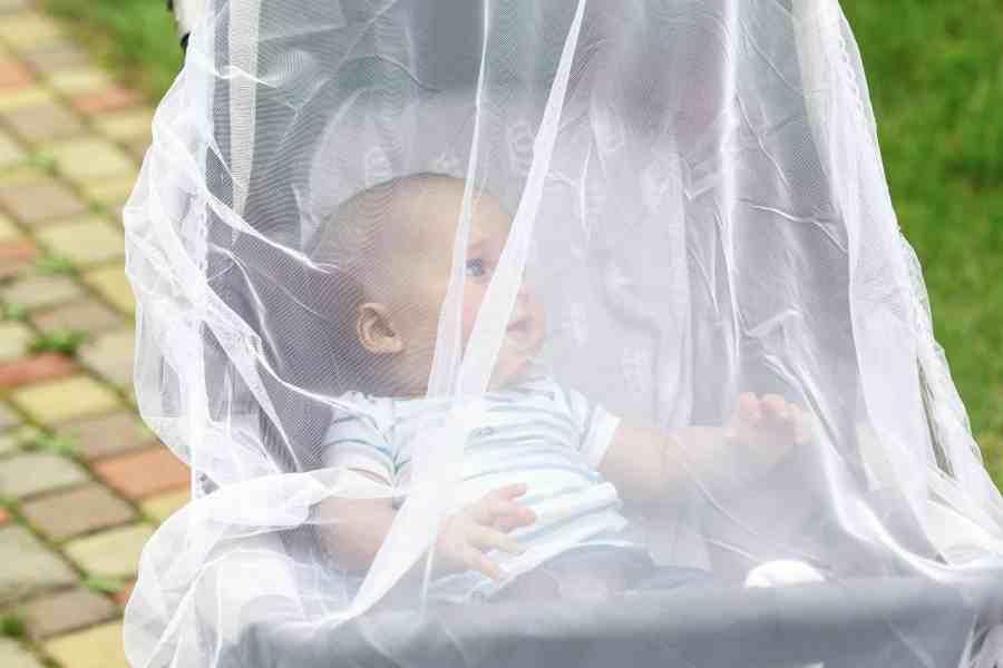 Bebê dentro de carrinho coberto por mosquiteiro
