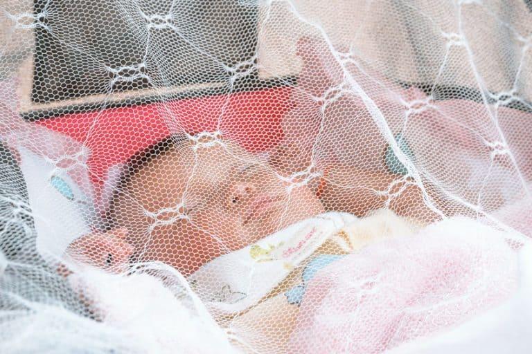 Bebê dormindo em carrinho coberto por mosquiteiro