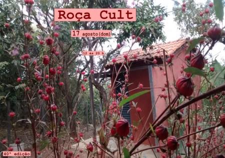 roca_cult_01