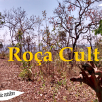 Roça Cult – Ecoturismo, arte e gastronomia – 42ª edição