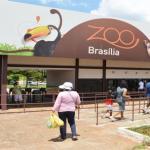 Zoológico de Brasília comemora 57 anos