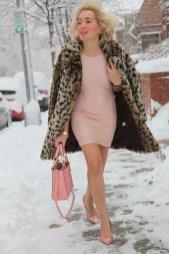 Fashion feline na neve, Angelica Ferrer in Washington DC