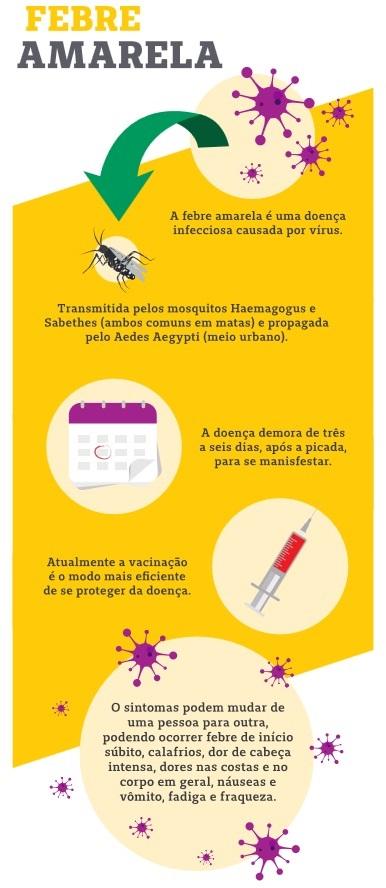 Dengue, zika and chikungunya fever mosquito (aedes aegypti) on human skin