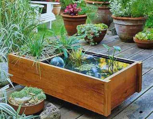 Piccolo giardino acquatico realizzato all'interno di un cassone